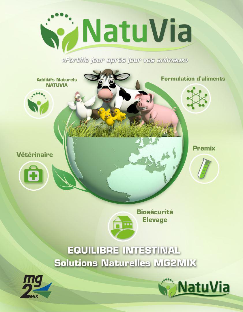 demedicalisation naturelle bio
